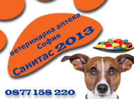 Sanitas_2013-banner